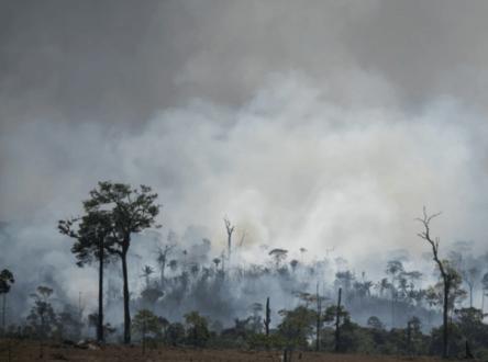Les incendies en Amazonie creusent un fossé entre les chrétiens