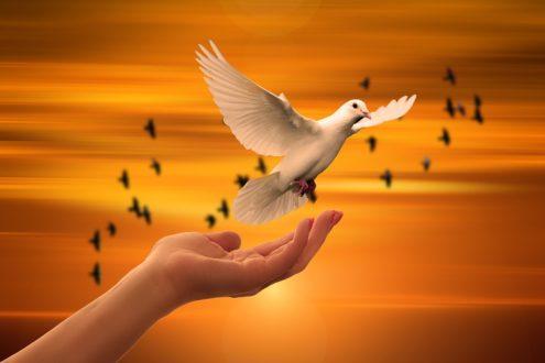 Prier pour la paix en Palestine et en Israël