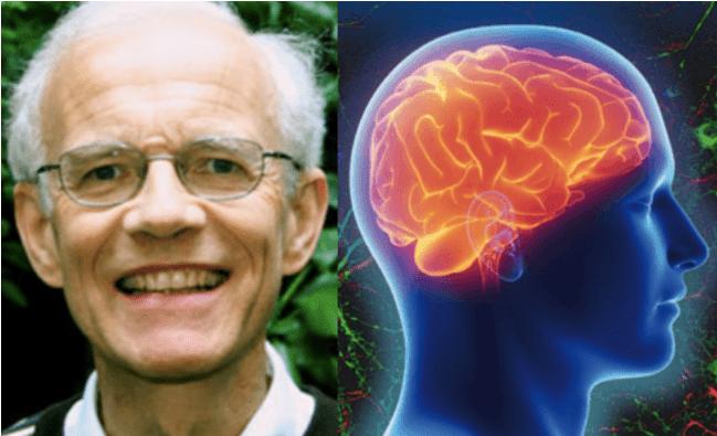 Dieu, l'homme et le cerveau