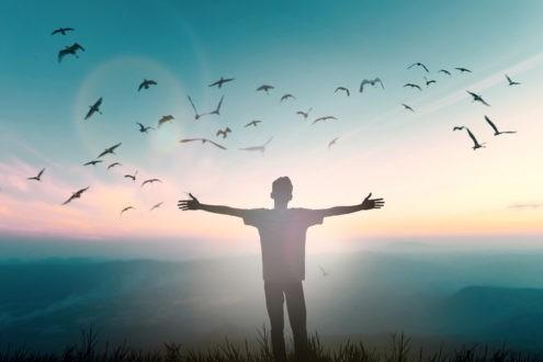 Un chemin de liberté