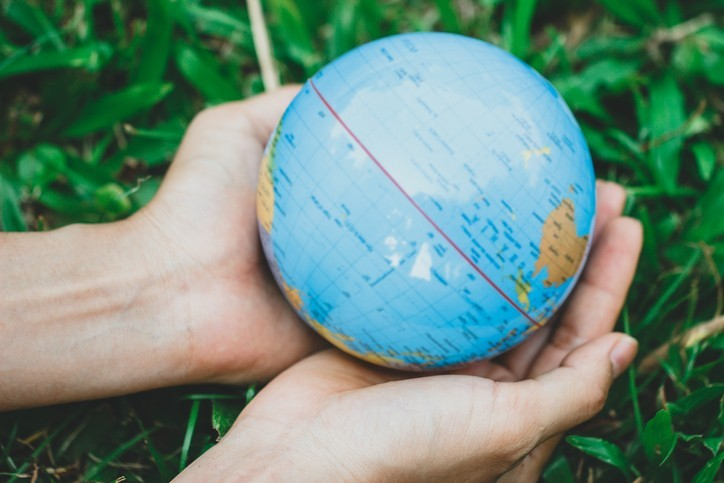 Sauver la beauté du monde