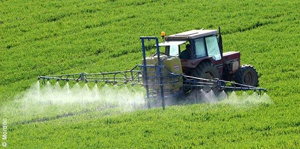 Conseil constitutionnel : coup d'arrêt au lobby des pesticides