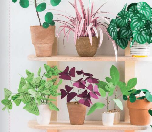 Plantes en papiers Eyrolles DIY confinement