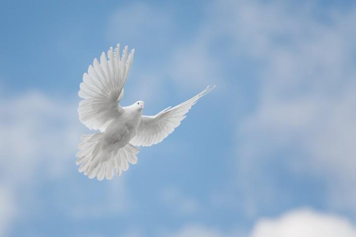 Le Saint-Esprit : Dieu agit en nous !
