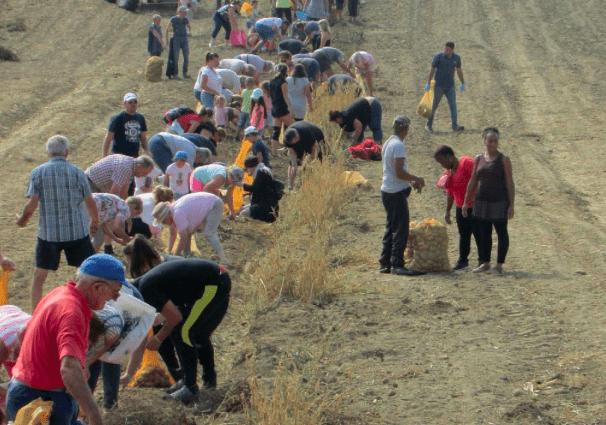 Monde rural, un nouveau lieu de mission