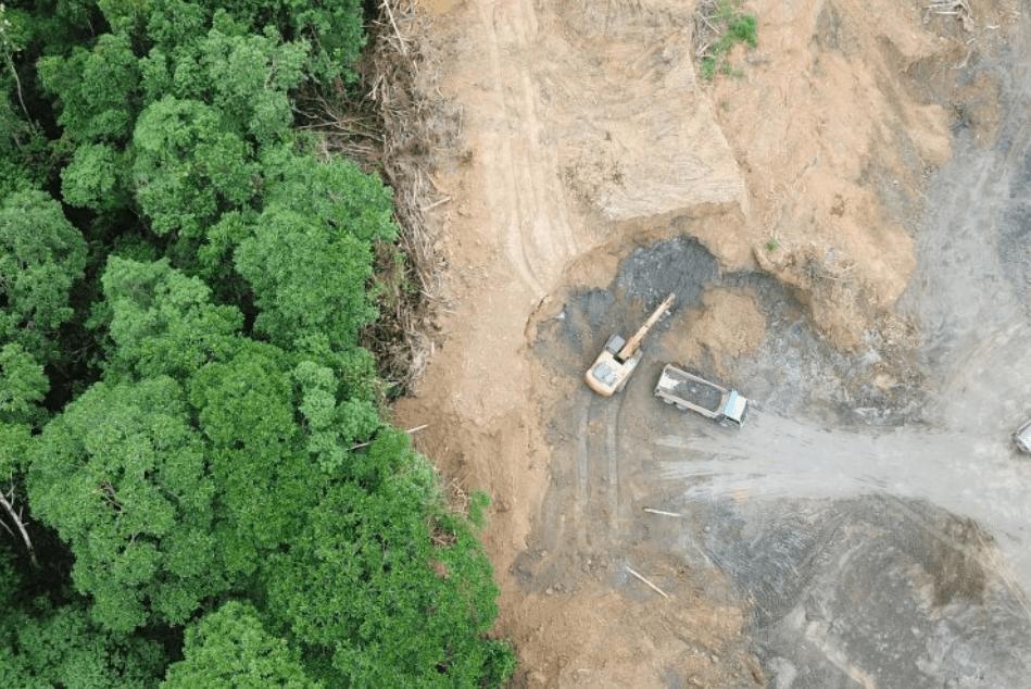 La déforestation de l'Amazonie profite de la pandémie