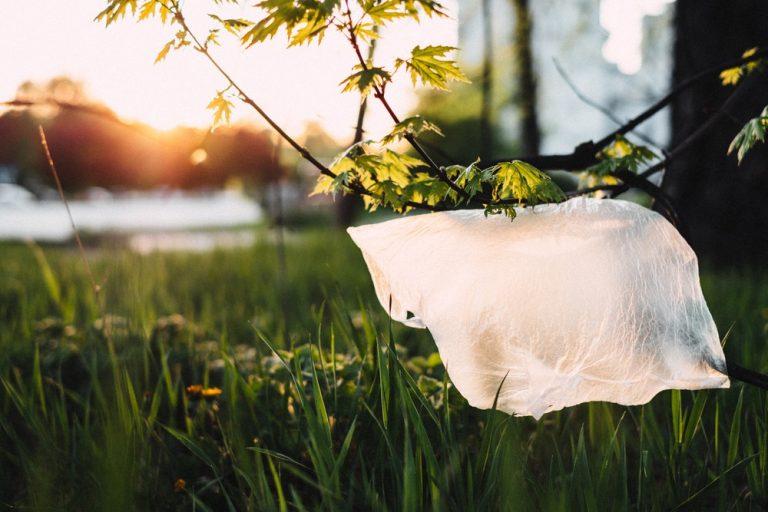 Le retour du plastique ne mettra pas fin à la pandémie