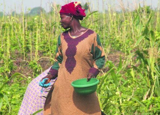 Intégrer l'agroécologie dans les programmes missionnaires