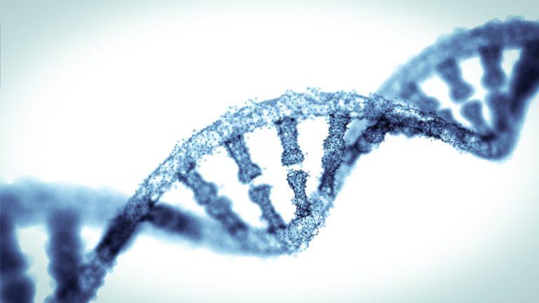 Génétique : Crispr-Cas9, super-héros ou super-fléau ?