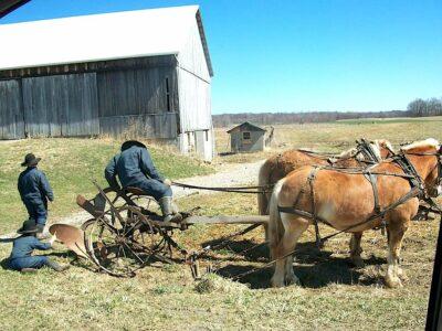 Les écologistes sont-ils des Amishs (ou inversement) ?