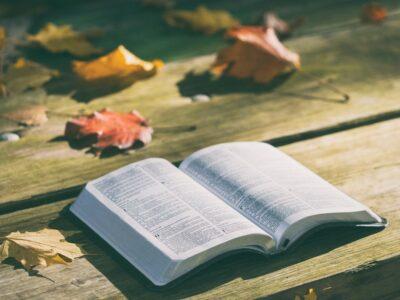 Qu'est-ce que les assemblées darbystes ou assemblées de frères ?