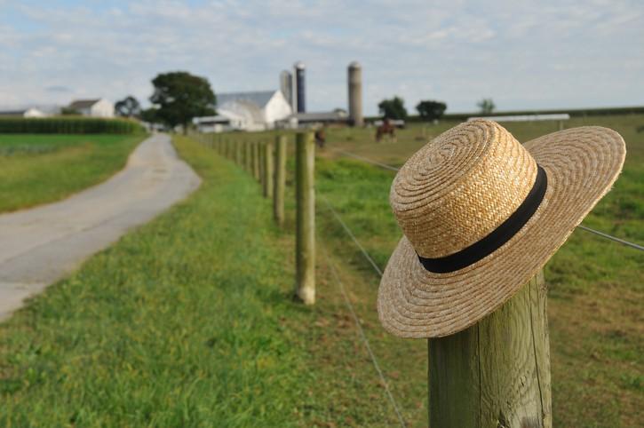 Macron et le « Modèle Amish »