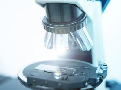 Bioéthique : comprendre et agir en chrétien