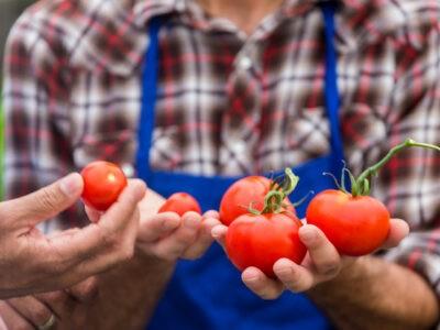 Les enjeux de la justice alimentaire